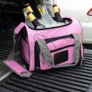 Pretty in Pink Portable Cooler Bag with Removable Liner