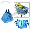 Shopping with Cooler Bag