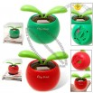 Solar Powered Flip Flap Sprout Toy with Flower Pot