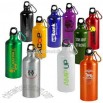 22 oz light weight aluminum sports water bottle with carabiner clip on loop cap
