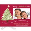 Lovely Picture Branches Holiday Card