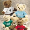 Teddy Bear with Important Tee Shirts
