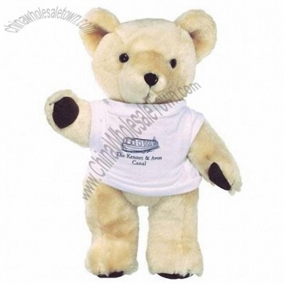 10 inch Honey Bear and T Shirt