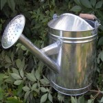 10L Tin Watering Can