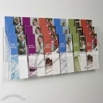 18 Pocket Clear Acrylic Wall Brochure Holder