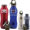 24 oz beautiful curved stainless steel BPA free sport bottle
