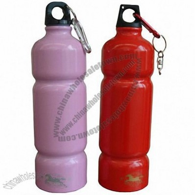 26.5oz Aluminum Water Bottle with Carabiner