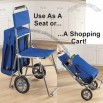 3-in-1 Shopping Cart
