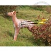3D Archery Target Sika Deer for Shooting