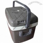 45Liter Car Cooler Box 12/240V Thermoelectric Portable Beverage Cooler and Food warmer