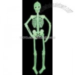 5Ft Glow in the Dark Jointed Skeleton