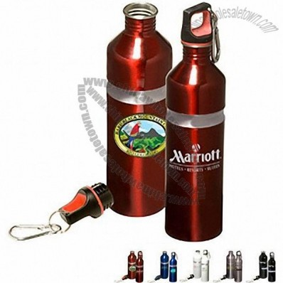 Acadia Stainless Bottle