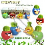 Angry Birds Office DIY Crop Mini Plants