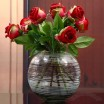 Ball Shape Glass Vase
