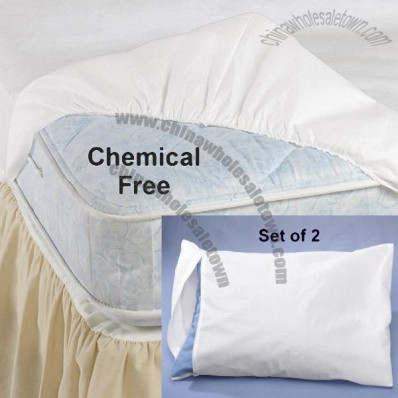 Bed Bug Pillow and Mattress Barriers