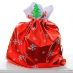 Big Snowflake Red Christmas Gift Bag