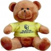 Brown Stuffed bear with t-shirt