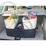 Car boot organizer with cooler