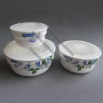 Ceramic Bowls with Plastic Lid