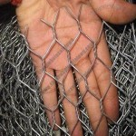 Chicken Wire, Electric-galvanized/Hot-dipped Zinc-plated