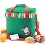 Christmas Gift Cooler Bag