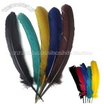 Colored Turkey Feather Quill Ballpoint Pen