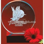 Crystal halo award