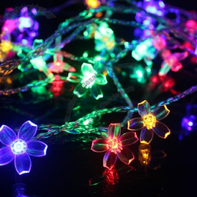 Customized Colorful LED Decorative Lights