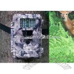 Digital Scouting Camera/ Hunting Camera/ Security Camera DVR