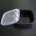 Disposable Container/Box, Microwave Oven Safe