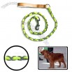 Dog Leash / Pet Leash