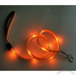 Dog Leash with LED Lights