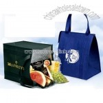Eco-Friendly Lead Free Insulated Cooler Bag