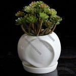Elephant Ceramic Succulent Planter Flower Pot