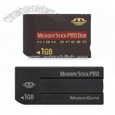 Flash Memory (Memory Stick Pro Duo)