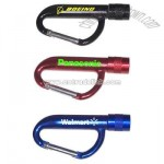 Flashlight carabiner key chain