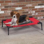 Foldable Pet Camp Bed