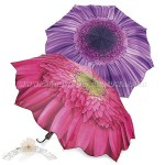 Gerbera Daisy Umbrella 46
