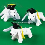 Graduation Autograph Dog Key Chains