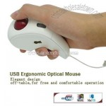 Hand-Held Off-Table Trackball Optical Mouse