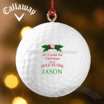 Hole-In-One? Personalized Ornament