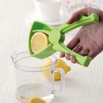 Lemon Orange Squeezer Juicer