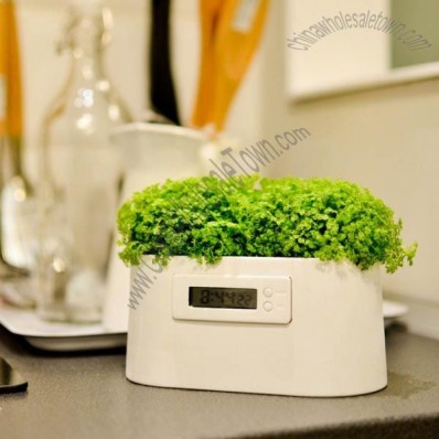 Micro Power Green Plant Desk Clock