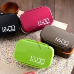 Microwave Double Meal Lunch Box