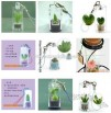 Mobile Phone Chain-mini plants