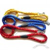 Nylon Dog Leash & Lead