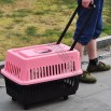 Pet Carrier Pull & Go