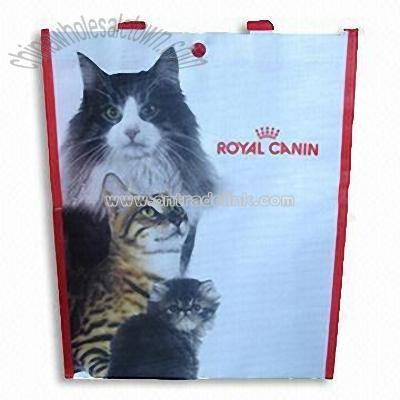 Plastic  Manufacturing on Plastic Gift Bag  Wholesale China Plastic Gift Bag Customized Popular