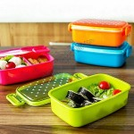 Plastic Lunch Box with Polka Dot Cover
