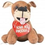 Plush Valentine Drooly Dogs with Card
